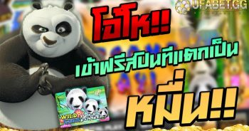 Wild Glant Panda