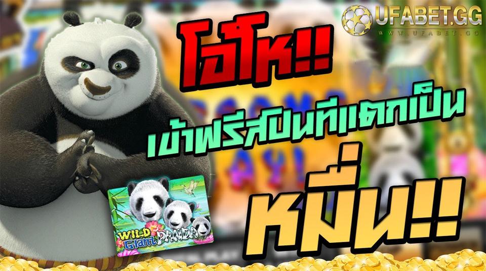 Wild Glant Panda เกมโจ๊กเกอร์ไหนแตกง่าย